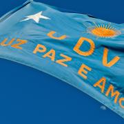 bandeira da uniao do vegetal