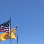 bandeira da udv