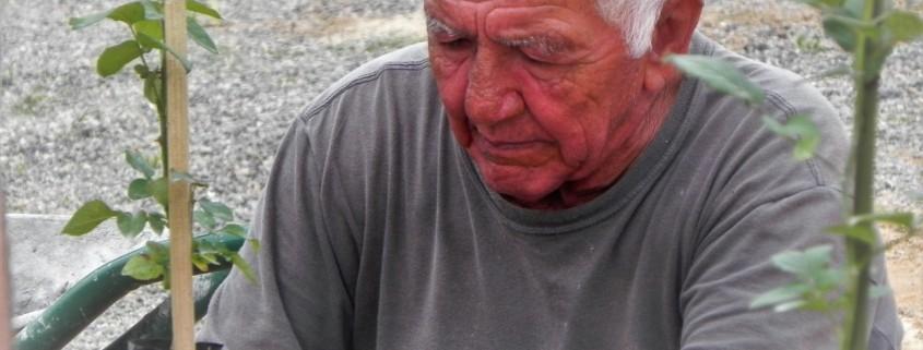 José Plantador