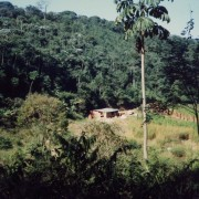 Sitio-UDV-Nucleo-Camalango