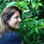 Conselheira-Celia-Carvalho