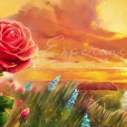 Rosa-UDV-Luiza-Flora