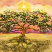 ilustracao-luiza-flora